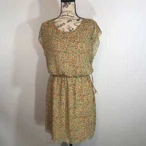 Sweet Storm Dress (Size Large)